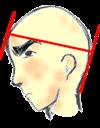 2)額と後頭部の出っ張りを確認